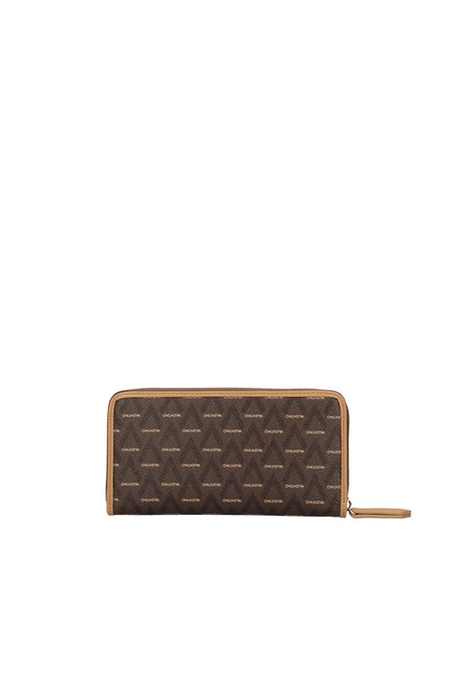 Valentino Bags Women's wallets BROWN