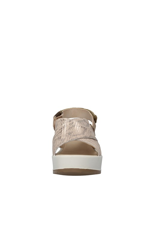 Igi&co With wedge GOLD